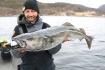 Roan grosse Koeder grosse Fische