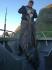 37kg Butt Rotsund Seafishing