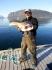 Rotsund Seafishing guter Dorsch
