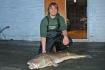 Dorsch 25kg Rotsund Seafishing