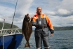 Heilbutt Rotsund Seafishing