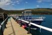 Rotsund Seafishing Boote