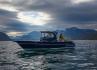 Rotsund Seafishing 850