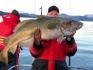Rotsund Seafishing Dorsch satt