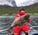Rotsund Seafishing Kuechenbutt