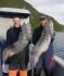 Doppelschlag Steinbeisser Rotsund Seafishing