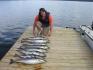 tolle Fischstrecke beim Angeln in Røttingsnesskolen