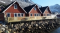 Senja Havfiskesenter neue Terrasse