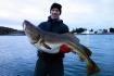 Skrei fischen und Nordlicht erleben