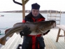 Skrei Nordskot Brygge 20 kg