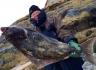 Heilbutt angeln in Norwegen