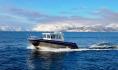 Kabinenboot mit 24 Fuß