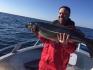 Traena Arctic Fishing Seelachs