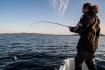 Leka mit Fischgarantie
