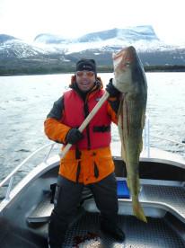 dicker Dorsch beim Frühjahrsangeln in Norwegen