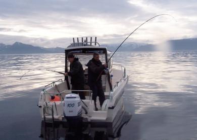 spitzen Kabinenboote für Angler in Karhamn Havfiske