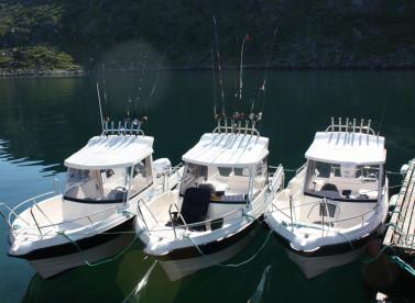 die Bootsflotte bestehend aus den bewährten Kabinenbooten Dolmøy