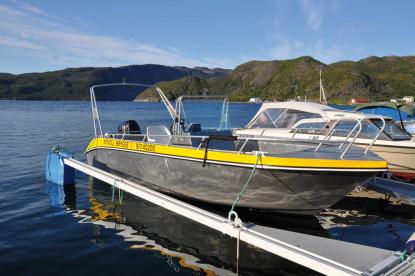 die klassischen Angelboote mit 19 Fuß und Kartenplotter