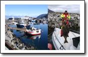 Erlebnisbericht vom Angeln in Norwegen