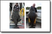 Wahnsinn: ein Angeltraum ging für diese Angler in Erfüllung