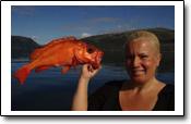 ein Familien-Angelreisebericht aus Fjordholt