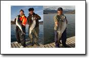 Angelreisebericht aus Foldvik Brygge