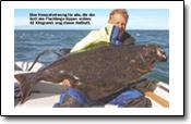 Tesfischen auf Ingøya