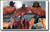 sensationelle Rotbarsche konnten diese Angler erbeuten: doch lesen Sie diesen Erlebnisbericht selbst