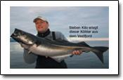 die Perle im Vestfjorden: Steigen