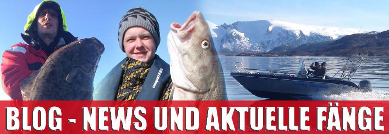 DinTur Blog: News und aktuelle Fänge aus Norwegen