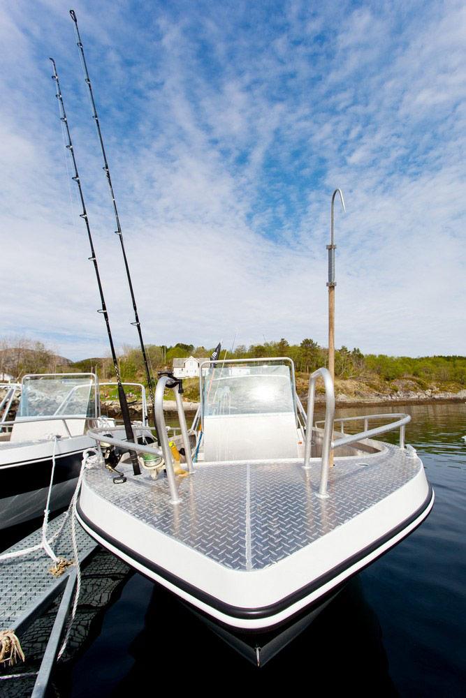 50 PS Angelboote mit Kartenplotter und Rutenhalter