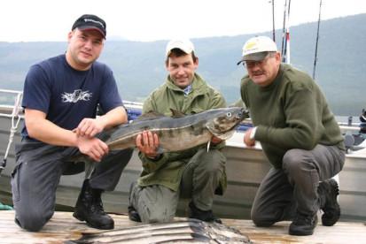 auch in Westnorwegen lassen sich tolle Seelachse fangen