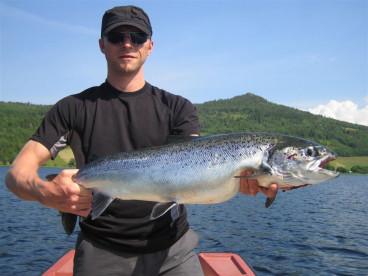 nicht nur Meeresfische werden hier gefangen, auch Lachse sind hier möglich