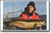 schöner Reisebericht Nordskot im Vestfjorden