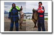 ein Reisebericht von Kunde Friese aus Larseng Kystferie