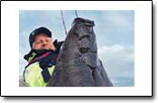 Hörmi mit Heilbutt in Helgeland Fjordferie
