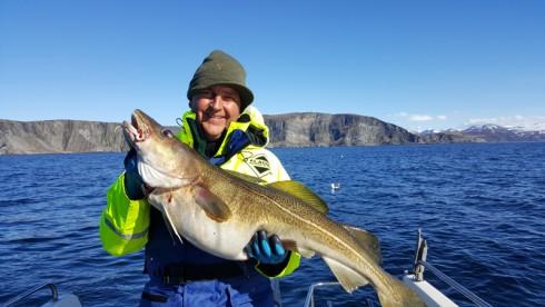 Dorsch angeln in Loppa Haugen