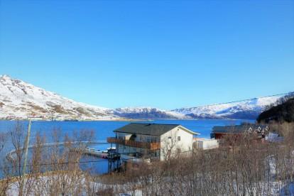 Amberfish Fjord