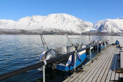 Angelboote Sjursnes