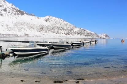 Boote Loppa Havfiske