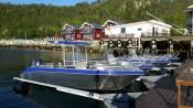 Amberfish Seehäuser