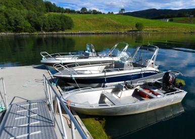 Boote Asplia