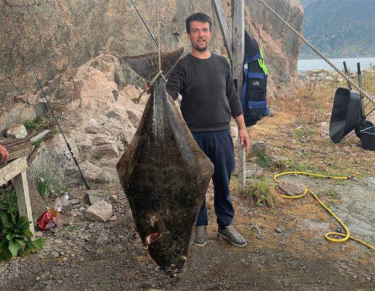 https://www.dintur.de/wp-content/uploads/2019/09/Elgsnes-Butt-50kg-Zoellner-Toppsundet.jpg