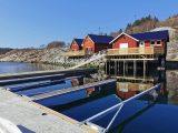 Beskelandsfjord Solvika